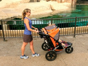 Ideal Stroller Form for walking or running